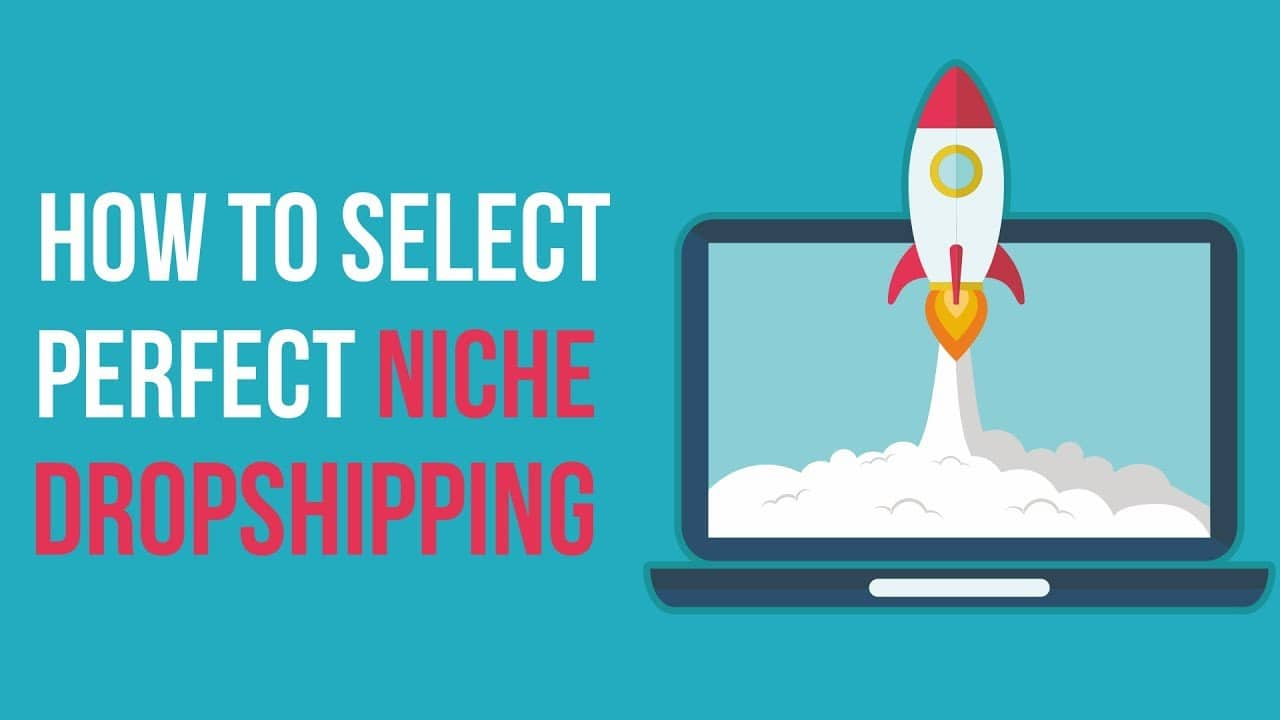 niche for dropshipping